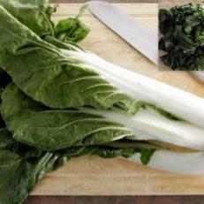 Pak Choi Canton White Brassica Rapa Seeds